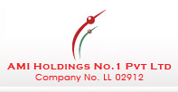 AMI Holdings No.1 PVt Ltd