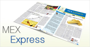 MEX EXPRESS Flash ePaper